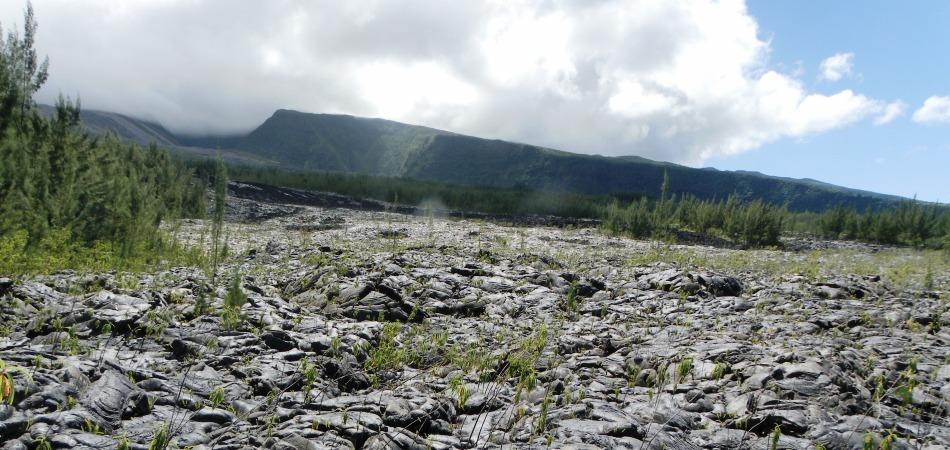 Coulée de lave du Sud Sauvage