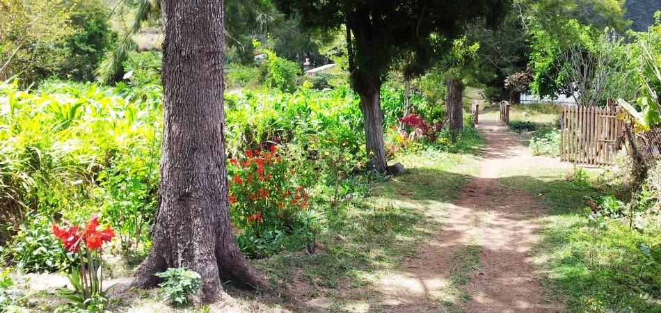 chemin Aurère