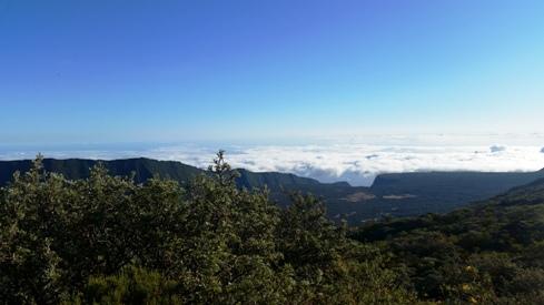 Vue depuis le gîte du volcan sur le Fond de la Rivière de l'Est